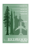 Redwood National Park - Redwood Relative Sizes Poster von  Lantern Press