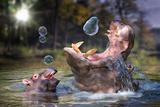 Hippos and Bubbles Poster von  Lantern Press