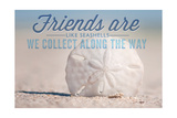 Friends are Like Seashells - Sand Dollar Pósters por  Lantern Press