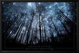 A imaginação mantém seus olhos nas estrelas e seus pés no chão Posters