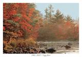 Foggy River Prints by Mike Jones