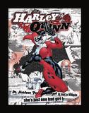 Harley Quinn 3D Framed Art Prints