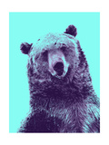 Grizzly Bear Giclee Print by James Hager