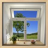 Window View Posters by paul prescott