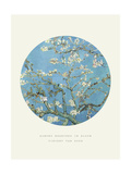 Old Masters, New Circles: Almond Branches in Bloom, San Remy, c.1890 Giclee Print by Vincent van Gogh