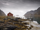 Rorbu and Jetty on Fjord, Lofoten Islands, Norway, Scandinavia, Europe Metal Print by  Purcell-Holmes