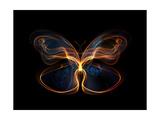 Butterfly Element Kunst op metaal van  agsandrew
