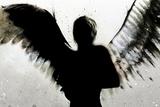 Himmel in ihren Armen Metalldrucke von Alex Cherry