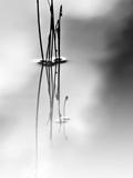 Silence Metalldrucke von Ursula Abresch