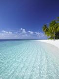 Tropical Island and Lagoon, Ari Atoll, Maldives, Indian Ocean, Asia Metalldrucke von Sakis Papadopoulos
