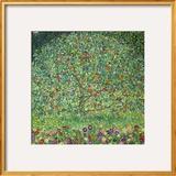 Macieira, 1912 Impressão giclée emoldurada por Gustav Klimt