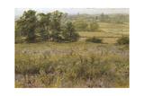 The Furze Field, 19th Century Giclee Print by Samuel Palmer