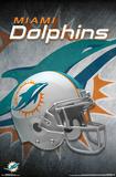 Miami Dolphins- Helmet 2015 Prints