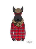 Scottish Terrier in Pin Plaid Shirt Giclée-Premiumdruck von Olga Angellos
