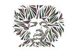 Jimi Hendrix Láminas por Cristian Mielu