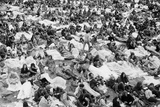 Reading Pop Festival, 1971 Photographic Print by David White