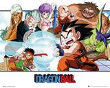 Dragonball- Young Goku Stampe