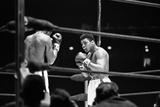 Muhammad Ali and Ernie Terrell fight 6th February 1967 Reproduction photographique par Michael Brennan
