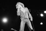 The Who in concert at Charlton 1976 Fotografisk tryk af Richard Reed