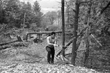 Muhammad Ali Chopping Down Trees as Part on His Training Routine Fotografisk tryk af Brendan Monks