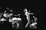 The Who Concert 1975 Photographic Print by Tony McGee