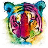 Tiger Pop Affiche par Patrice Murciano