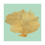 Coral on Teal I Prints by Jairo Rodriguez