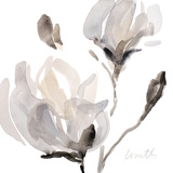 Tonal Magnolias I Kunstdrucke von Lanie Loreth