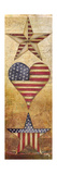 America Stars I Premium-giclée-vedos tekijänä Elizabeth Medley