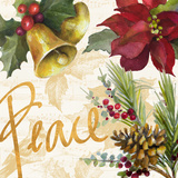 Christmas Poinsettia II Giclée-Premiumdruck von Lanie Loreth