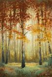 Woodland Glow II Art par Michael Marcon