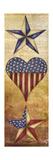 America Stars II Premium-giclée-vedos tekijänä Elizabeth Medley