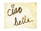 Darling Bella II Premium Giclee Print by  SD Graphics Studio