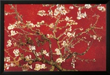 Almond Blossom - Red Poster by Vincent van Gogh
