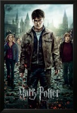 Harry Potter 7-Part 2 One Sheet Print