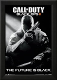 Call Of Duty Black Ops 2 Stealth Video Game Poster Poster