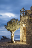 Tainaron Blue Retreat in Mani, Greece. Exterior View of an Alcove in a Stone Wall and a Tree Lámina fotográfica por George Meitner