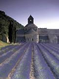 Abbey De Senanque, Provence, France Fotografie-Druck von Marcel Malherbe