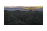Oakland Redwood Park, East View Morning Panorama 2 Fotografisk trykk av Henri Silberman