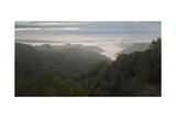 Oakland Redwood Park, East View Sunrise Valley Fog Panorama 2 Fotografisk trykk av Henri Silberman