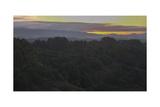 Oakland Redwood Park, East View Sunrise 4 Fotografisk trykk av Henri Silberman