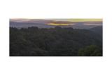 Oakland Redwood Park, East View Morning Panorama Fotografisk trykk av Henri Silberman
