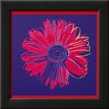 Gänseblümchen, ca.1982 (blau und rot) Kunst von Andy Warhol