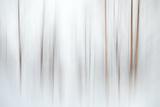 Fog Fotografie-Druck von Ursula Abresch