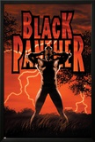 Black Panther No.6 Cover: Black Panther Photo by John Romita Jr.