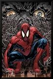 The Amazing Spider-Man No.553 Cover: Spider-Man Posters av Phil Jimenez