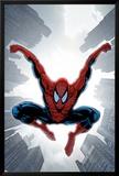 The Amazing Spider-Man No.552 Cover: Spider-Man Plakater av Phil Jimenez