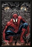 The Amazing Spider-Man No.553 Cover: Spider-Man Plakater av Phil Jimenez