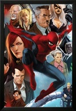 The Amazing Spider-Man No.645 Cover: Spider-Man, Black Cat, J. Jonah Jameson, and Mary Jane Watson Affiches par Marko Djurdjevic