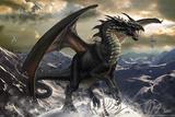 Rogue Dragon Bilder av Tom Wood